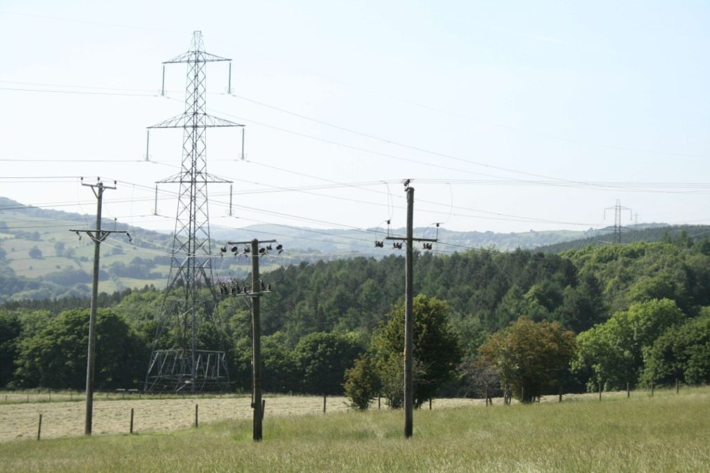 Electricity Pylons crossing field and woodland
