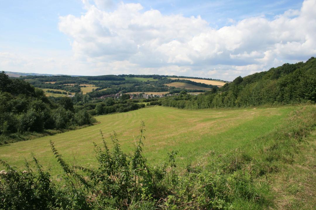 View accross Lot 3, Ramshaw Farm